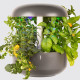 Pametni vrt Plantui 6 Smart Garden, siv